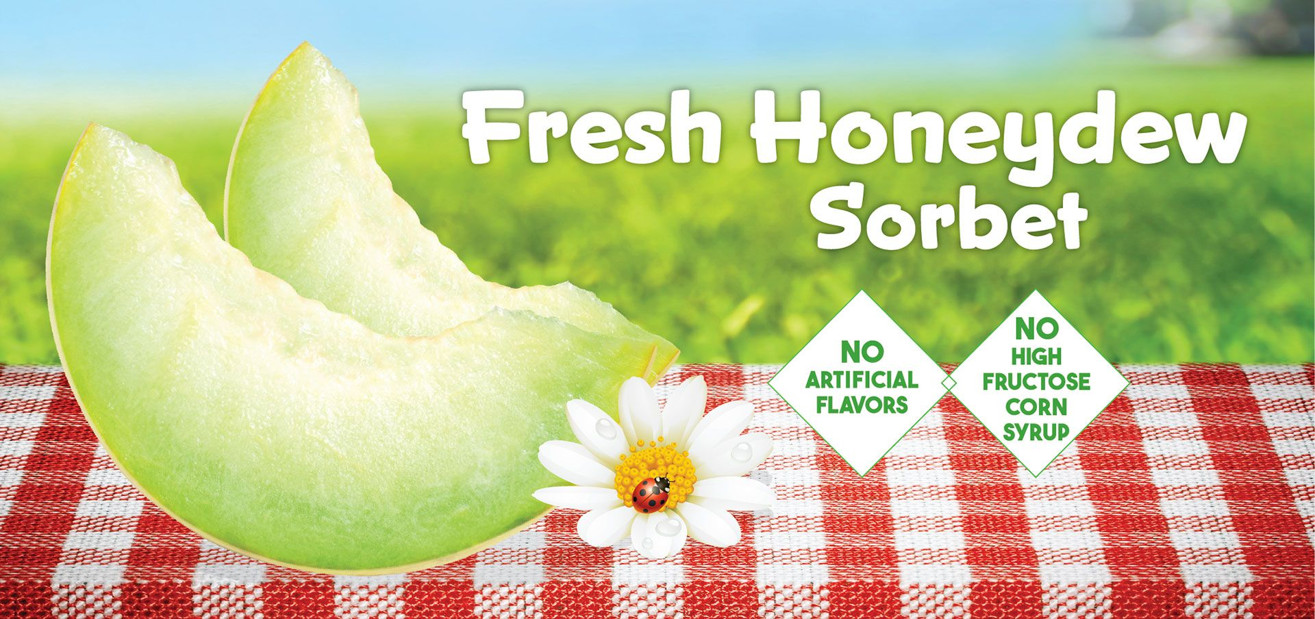 vegan fresh honeydew sorbet label image