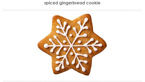 spiced gingerbread cookie