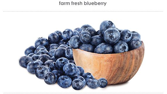 farm fresh blueberry