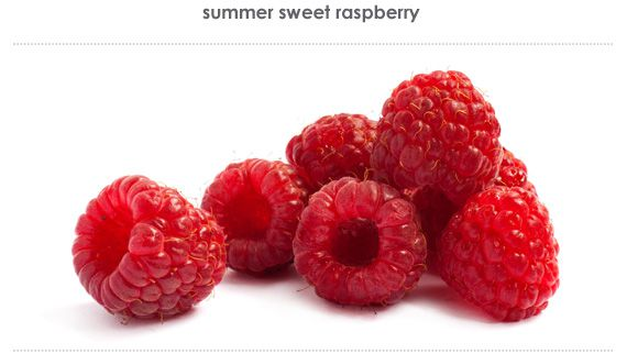 summer sweet raspberry