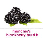 menchie's blackberry burst