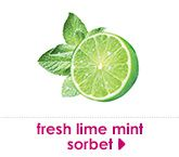 fresh lime mint sorbet