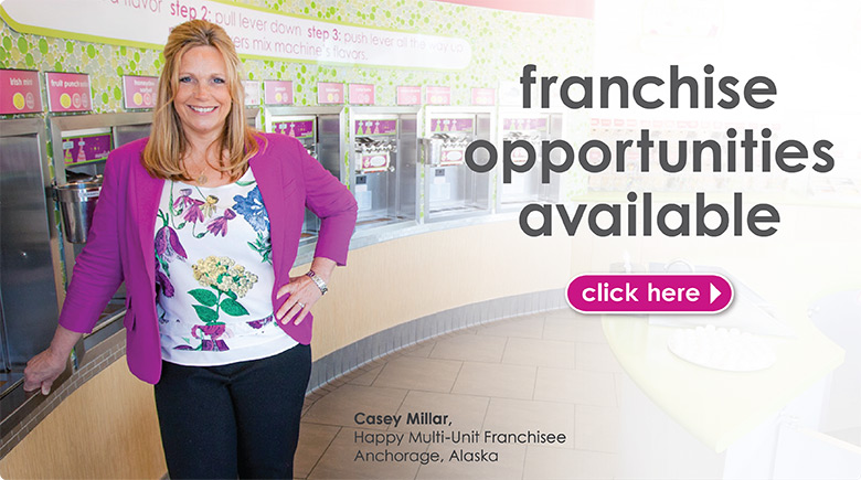Menchie's Franchise opportunities are available.