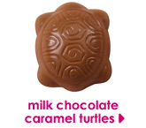 milk chocolate caramel turtles