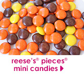reese's® pieces® mini candies